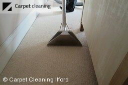 Ilford IG1 deep carpet cleaning experts